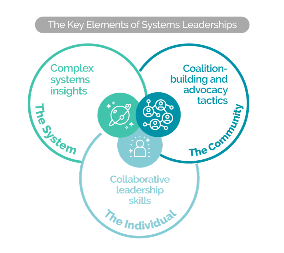 key elements of systems leadership